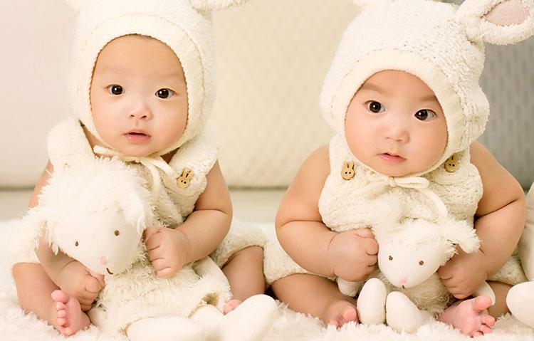 双子 出産祝い